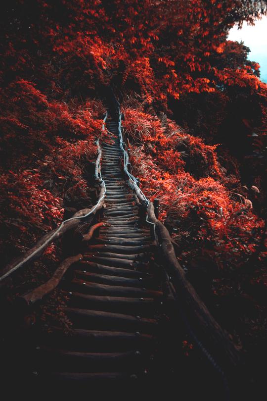 http://elena-igret.tumblr.com/