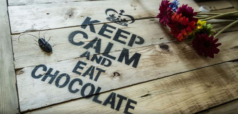 https://500px.com/photo/72251575/keep-kalm-and-eat-chocolate-by-luca-tomiello